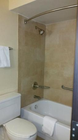 Holiday Inn Hotel & Suites - North: Clean shower and tub