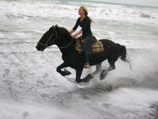 Eastender Horse Treks