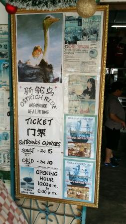 Desaru Ostrich Farm: Prices