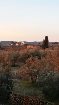 Agriturismo La Loccaia: L alba