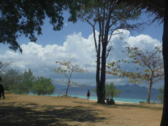 Banana Island: Beautiful day for swimming, snorkeling, kayaking and just sitting under the shade of a tree thin