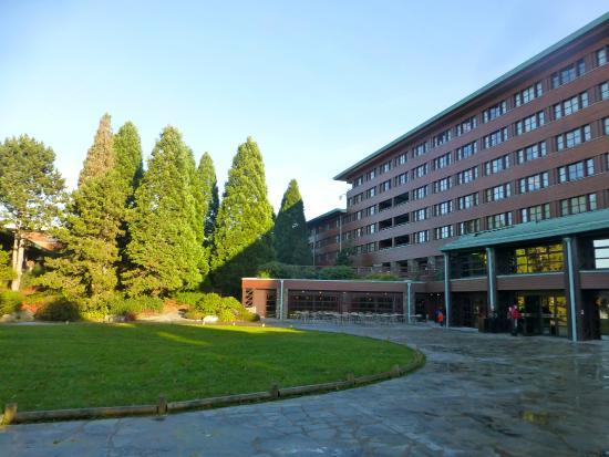 Loja picture of disney 39 s sequoia lodge coupvray for Hotel sequoia lodge piscine