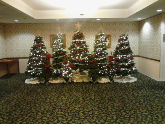 Quality Inn & Suites: Christmas Decor