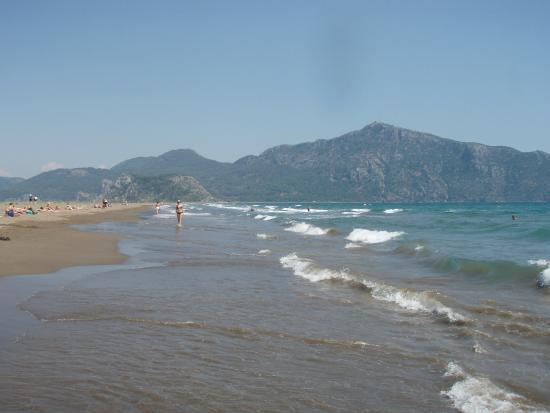 Iztuzu Beach : 2