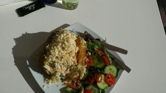 Fresh Food Cafe: Biggest baked potato ever. Tasty as well!