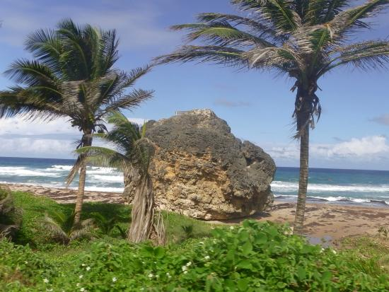 Ted's Tours: Bathsheba