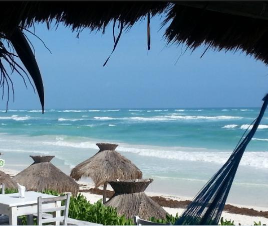 Zulum Beach Club Restaurant: View from the restaurant.