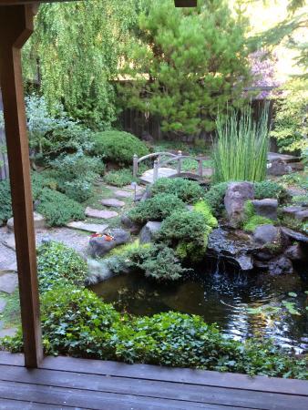 Freestone, Califórnia: pre enzyme treatment garden