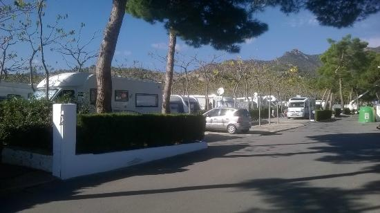 Bonterra Park Camping and Bungalows: Campsite