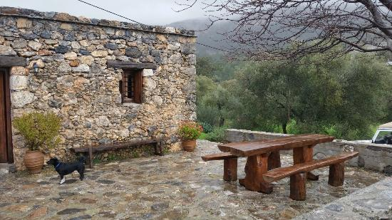 Guesthouse Alonia: Αλώνια  δεκ 2024