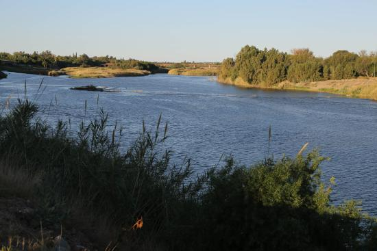 Protea Hotel by Marriott Upington: Orange River from riverbank