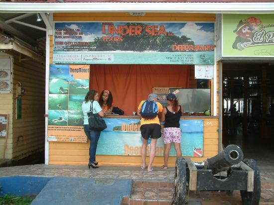Under sea Panama : OFFICE IN BOCAS TOWN