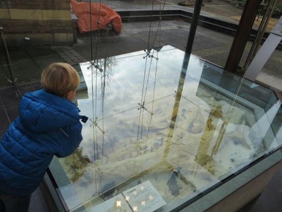 Natural History Museum (Natuurhistorisch Museum): de mosasaurus die in de mergel in maastricht gevonden is
