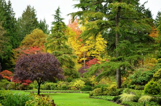 Central Saanich, Canada: Cores do Outono