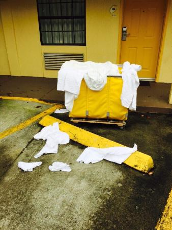 La Quinta Inn Savannah Midtown: Guest towels on the floor of the parking lot. Do not recommend.