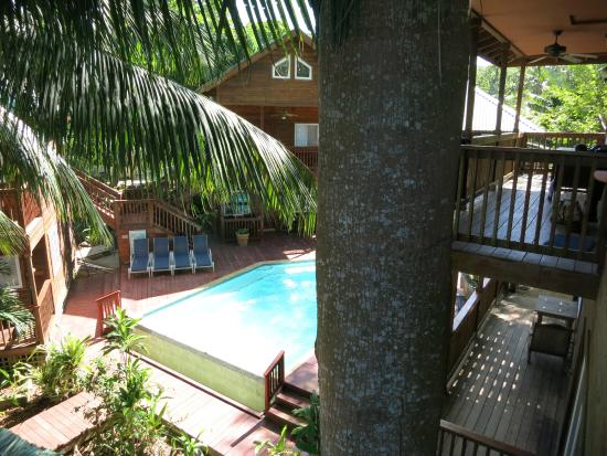 Blue Bahia Resort : Starry Night:view of pool and other deck w/ trunk of ceiba tree