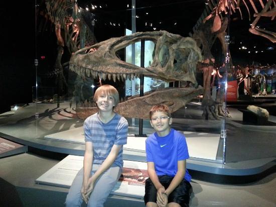 Dinosaurs special exhibit foto di cincinnati museum Dinosaur museum ohio