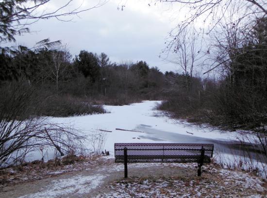 William Mitchell State Park: Black Creek
