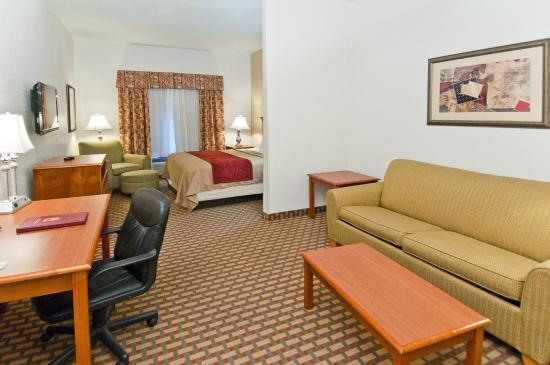 Comfort Inn & Suites near Medical Center: KIng Suite with sofa sleeper with refrigerator & microwave