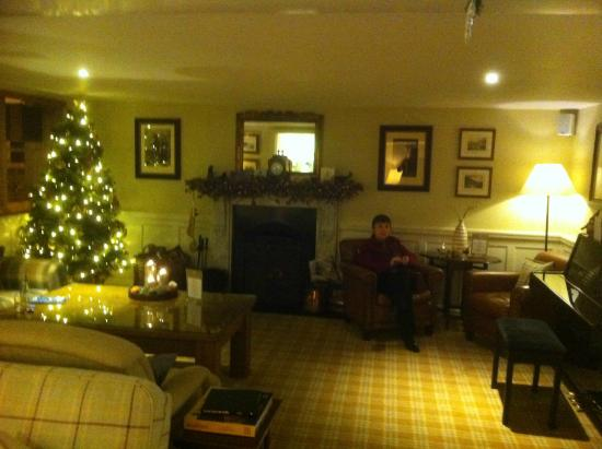 The White Hart Hotel : Lounge