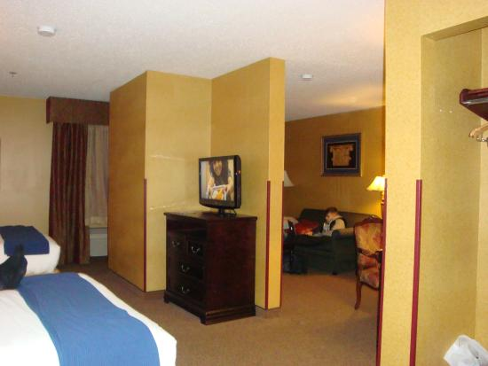 Holiday Inn Express Hotel & Suites: Living room