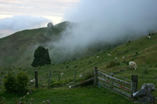 Kairuru, Новая Зеландия: This was amazing, to see the cloud roll down from the hill to the sea...