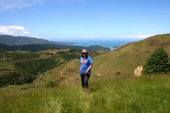 Kairuru Farm Cottages: Plenty of lovely walks. view down to Marahau and Tasman Bay