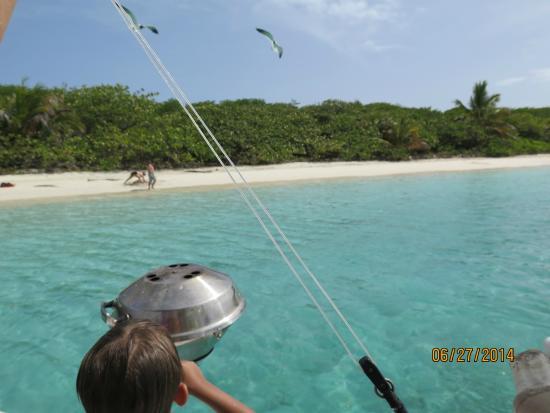 Villa Pelicano: Culebrita beach - by boat
