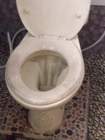 BaleKu: Toilette im 50 grad heissem Badezimmer!