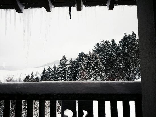Logis La Bouloie: La vue depuis une table du restaurant