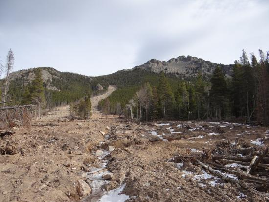 Dao House : 2013 rock & mud slide off Twin Sister Mountain