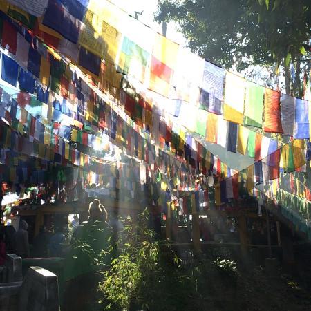Mahakal Temple: The ray of morning light