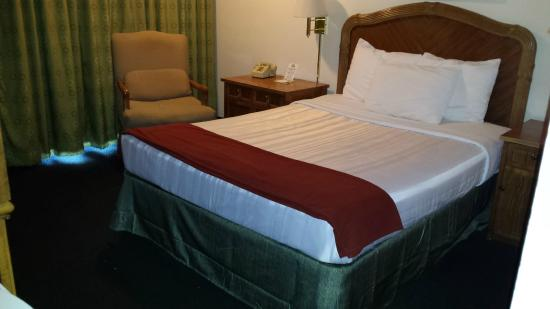 Days Inn Kennewick: Our single queen room with the new bedding