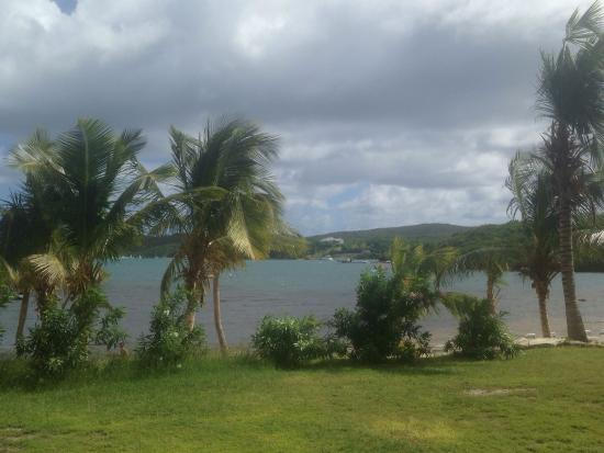 Nonsuch Bay Resort: View from our back porch