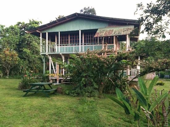 Tesoro Verde Lodge & Hostel: Edi, Principal