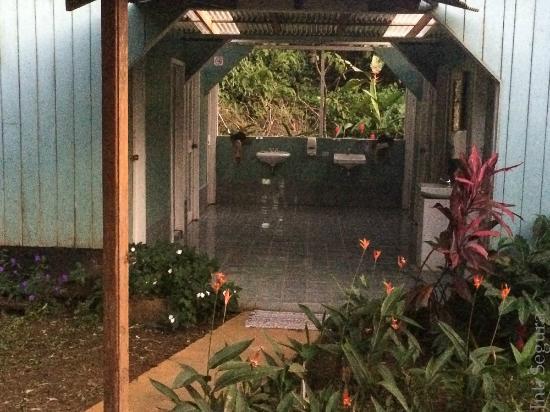 Tesoro Verde Lodge & Hostel: Baños limpios