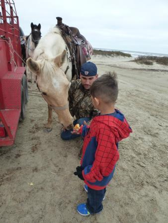 S-n-G Horseback Riding: T.J. teaching my son how to feed the horses