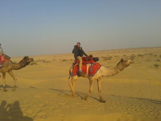 Hotel Royal Haveli: camel ride