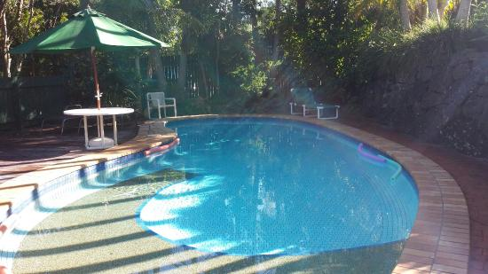 Clouds of Montville Eco Resort and Spa : Pool area