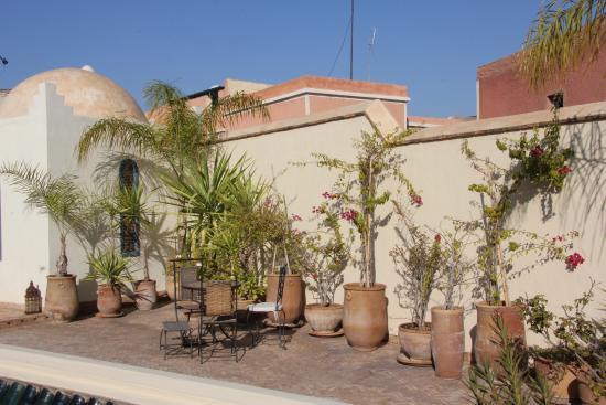 Riad Sahara Nour : Terrasse (vue partielle)