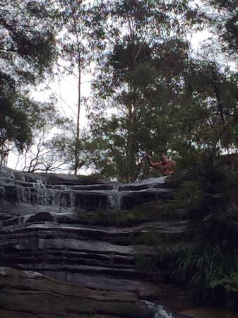 Katoomba Falls Tourist Park: Katoomba