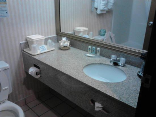 Quality Inn & Suites Romulus: Room 125 - Very small bathroom