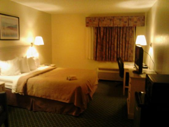 Quality Inn & Suites Romulus: Room 125