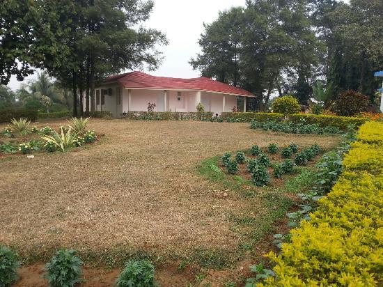 Peerless Resort, Mukutmonipur: Garden