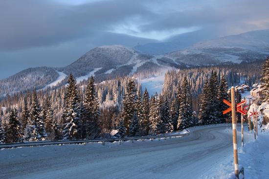 De weg naar de Are Mountain Lodge