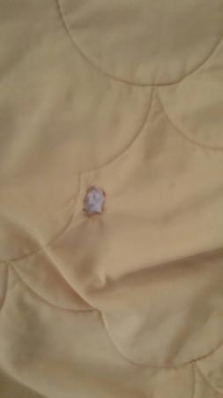 Motel 6 Winston-Salem: burn holes in sheets