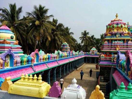 Antarvedi, India: Temple pic from roof top..