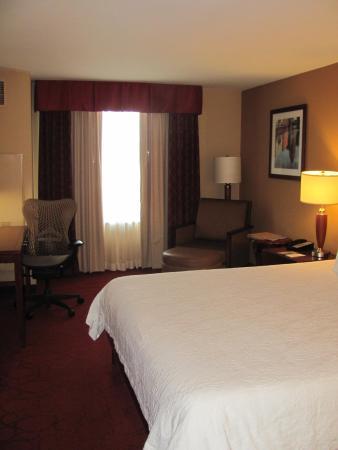 Hilton Garden Inn Milwaukee Airport: typical room