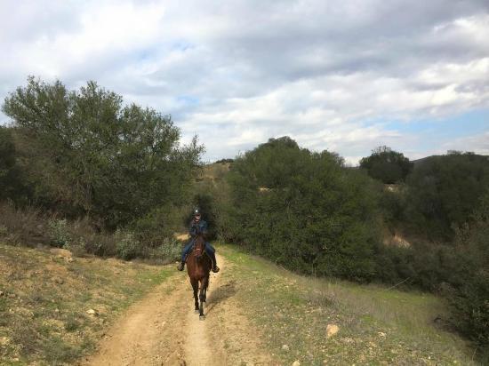 Malibu Riders Inc: What fun!