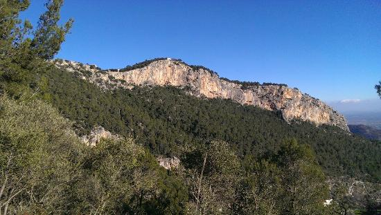Castell d Alaro : Great views